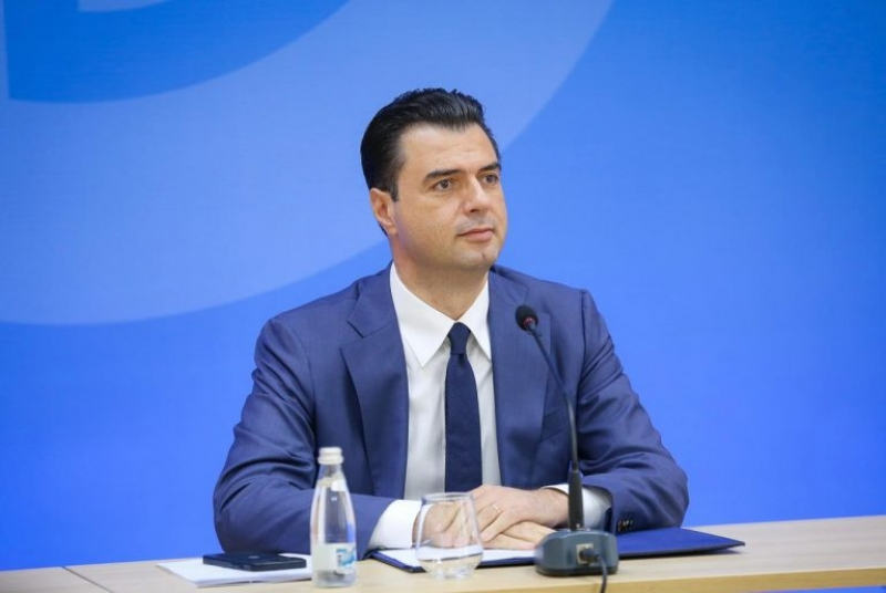 BE ndihmon Shqipërinë me 2 helikopterë për zjarret, Basha: Moment kritik, një mik i mirë në kohë të vështira