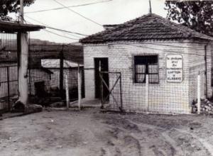 Reparti nr.318 Kosovë në vitet 1976 – 1991, kampi i tretë për gratë në Shqipëri