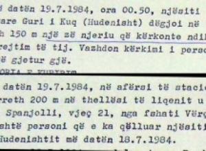 1984/Kërkoi ndihmë por u vra nga rojet kufitare