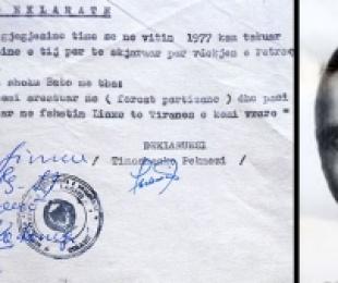 Misteri i vrasjes së përkthyesit të gjermanëve, Petraq Pekmezi