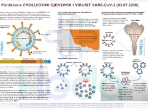 Varianti i SARS-CoV-2 me mutacionin që shkakton përhapje më të lartë po dominon